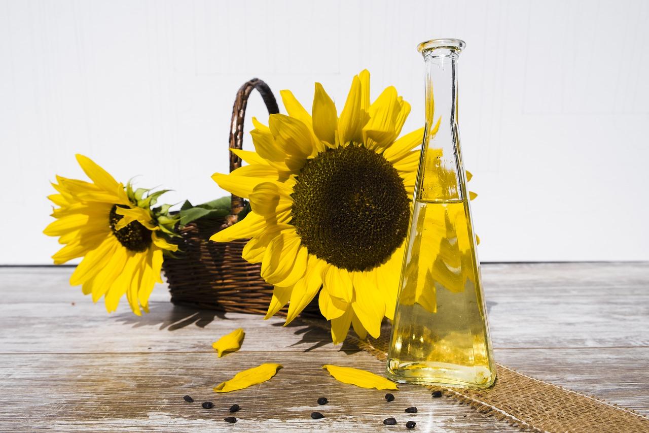 Olej słonecznikowy i jego zastosowanie